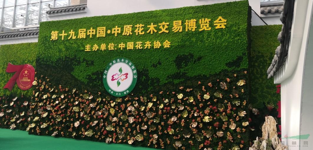 幾木園林景觀 第十九屆中國·中原花木交易博覽會開幕在即,中國園林網現場探秘,簡直不要太美!